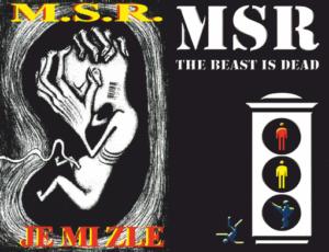 paratmagazine com msr